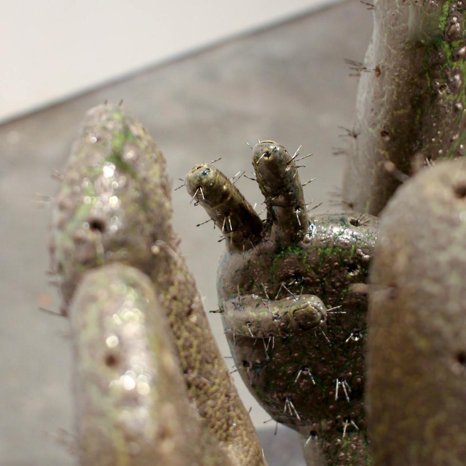 Cactus Elegance (hand detail)