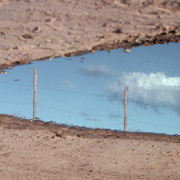 Corralled Water