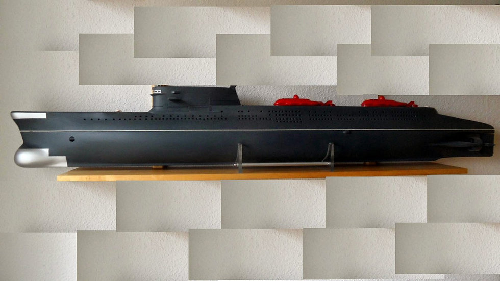 Soviet India Class in 1:60 Scale