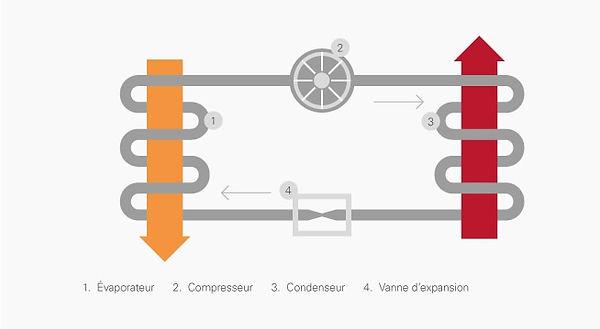 1_2_XL_Infograph-7-FR.jpg