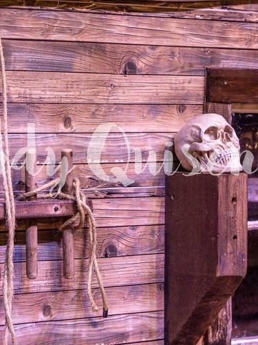 A Pirate's Catch (43).jpg