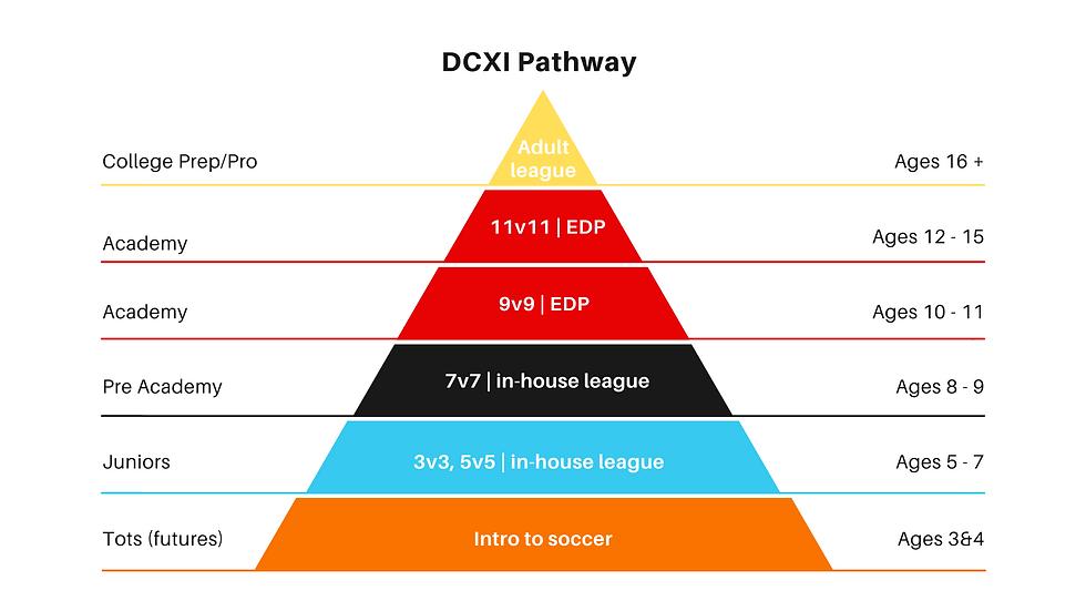 DCXI Pathway 2021.png