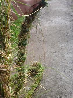 Grass Miles