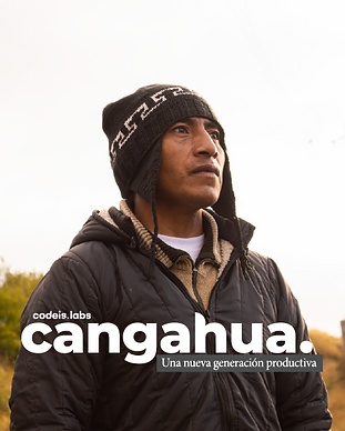 PROJECTS_CANGAHUA.png
