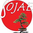 LOGO SOJAE (1).png