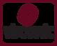 virconic-logo_3.png