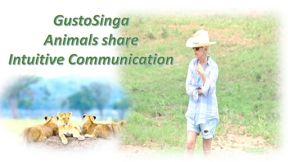 Animal communication poster.jpg