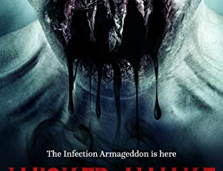 Novel Spotlight: Wicked Awake