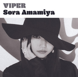 viper_T_JK.jpg