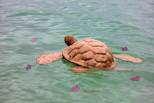 Floating Turtle Urn