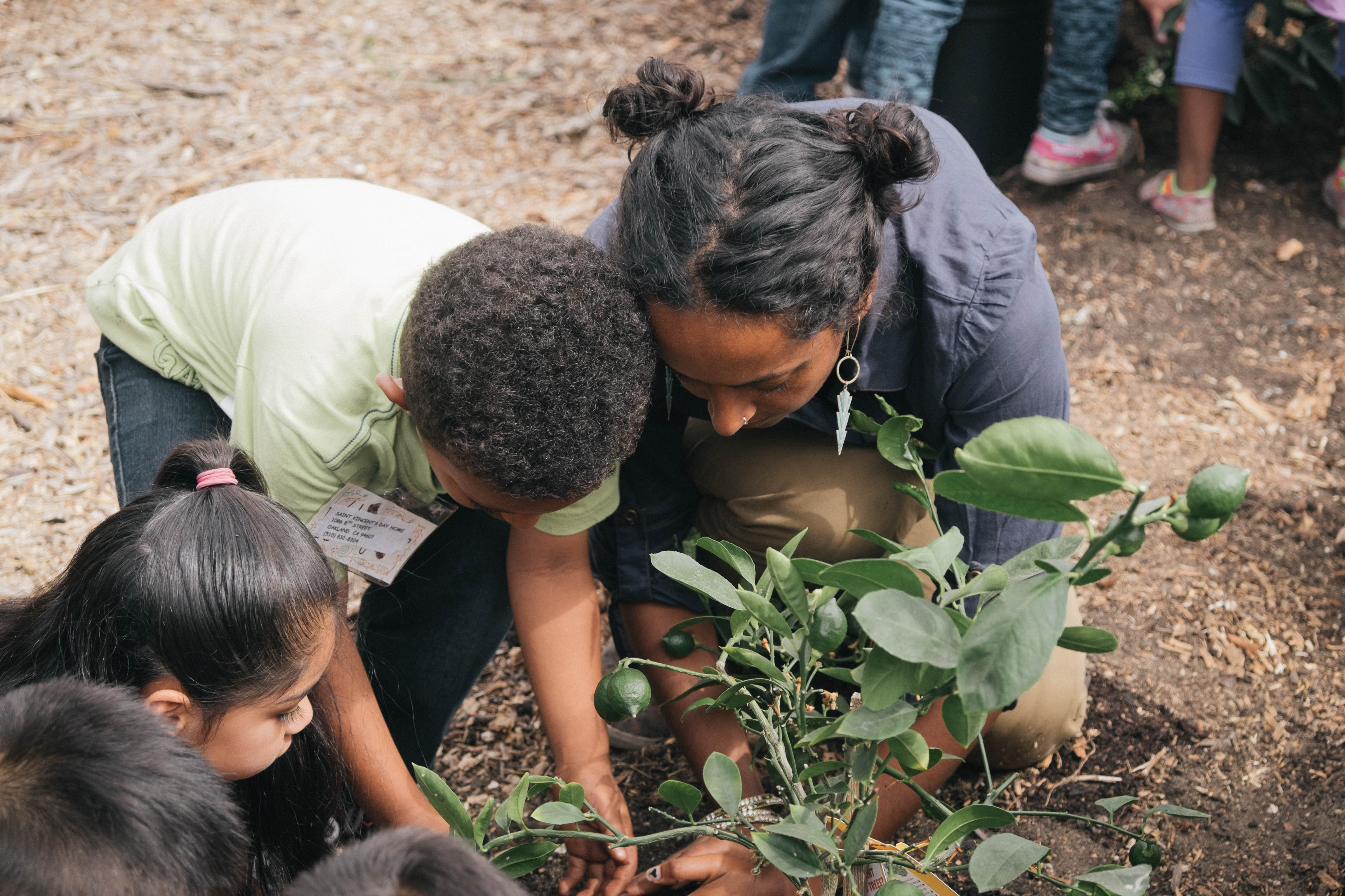 Tree Plantings with Kids