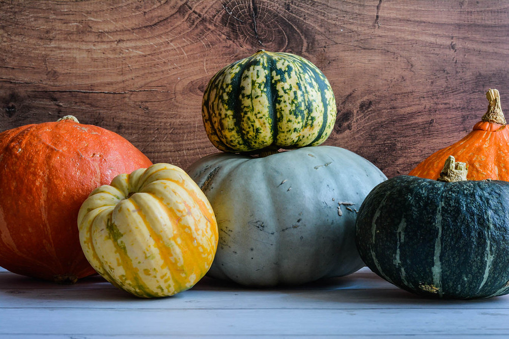 Food photography of pumpkins