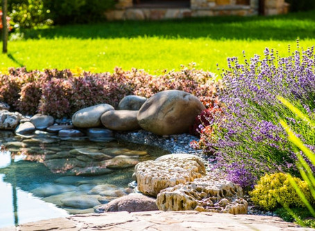 The Different Landscaping Design Styles