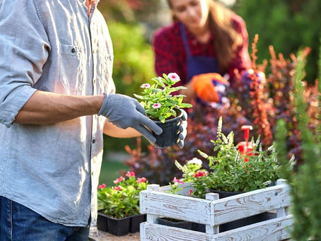 A Guide to Preparing Your Yard for Landscaping