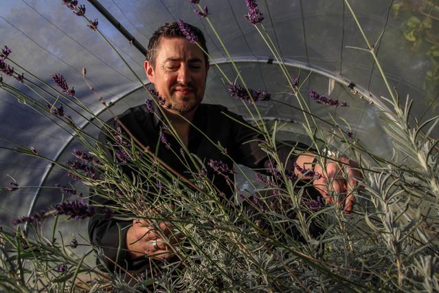 Christophe Sagory et ses plantes aromatiques - Chef cuisinier de l'Aromatic