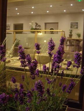 Salle du restaurant bistronomique l'Aromatic en Bretagne