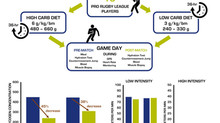 Muscle Glycogen Utilisation during Rugby Match Play