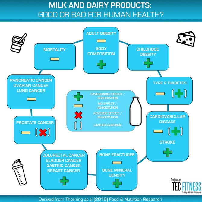 Milk and Dairy Products: Good or Bad for Human Health?