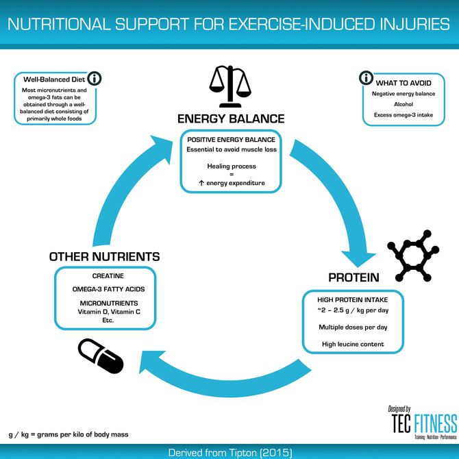 Nutritional Support for Exercise-Induced Injuries