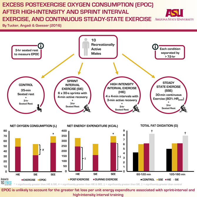 Energy Expenditure after Interval and Steady State Cardiovascular Exercise