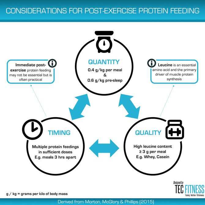 Considerations for Post-Exercise Protein Feeding