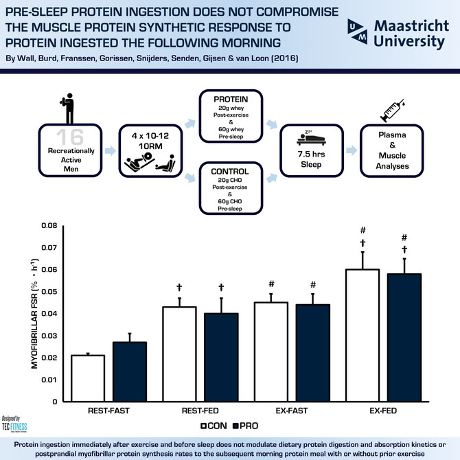 Pre-Sleep Protein Ingestion Does Not Compromise the Muscle Protein Synthetic Response the Following