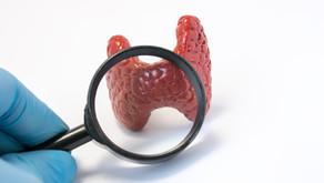 Tratamiento del hipotiroidismo ¿Cómo interpretar la analítica?