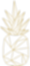 TMC_Pineapple Icon Simple.png