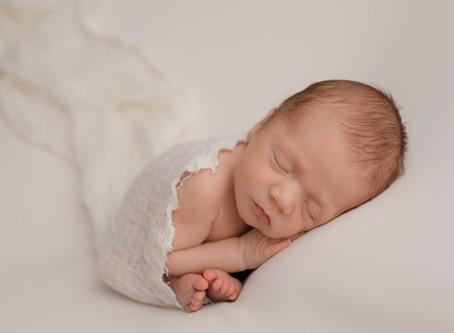 Milo - Edmonton Newborn Photographer