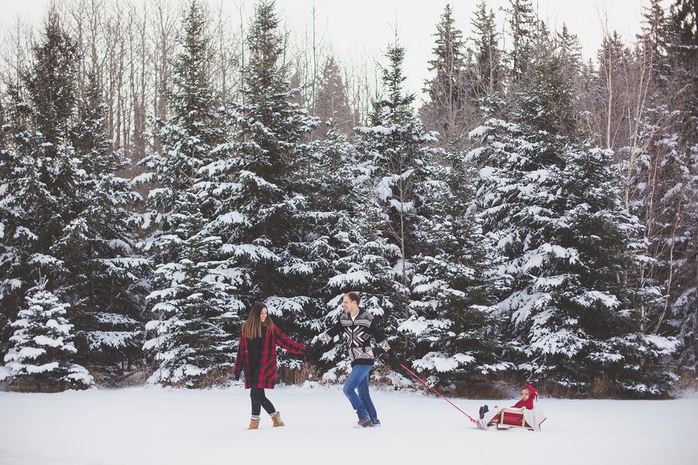 Edmonton-photographer-lifestyle-winter-trees-Christy-Wells-.jpg