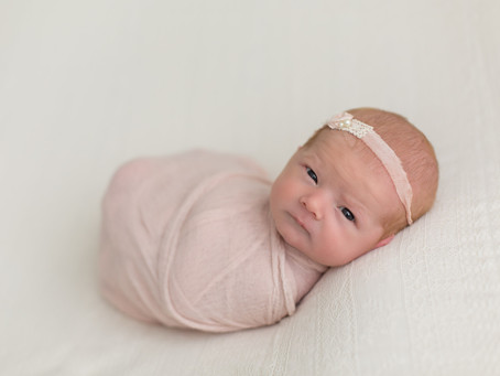 Ellery - Newborn photography Edmonton