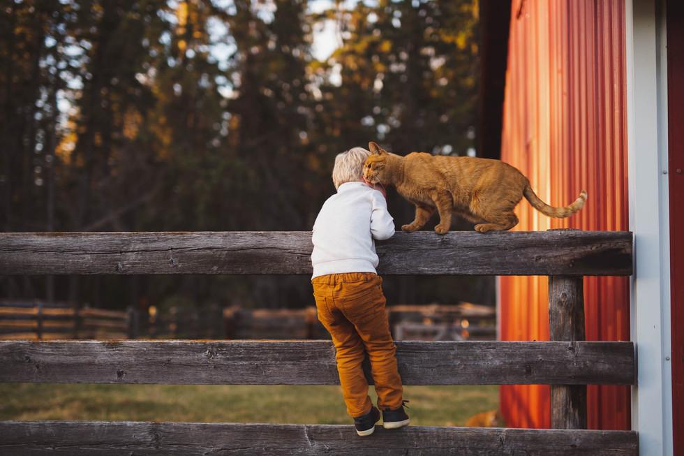 edmonton-fall-family-red-barn-photographer-Scholten-Christy-Wells.jpg