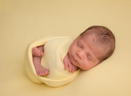 Lorenzo   Best newborn photographer in Edmonton
