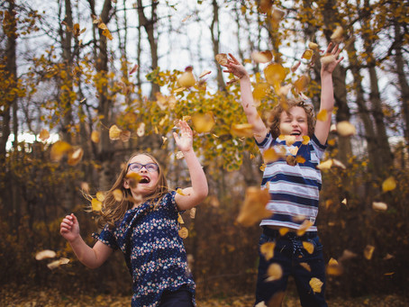 When is the best time for fall family photos   Edmonton fall family photos open for booking