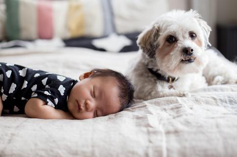 edmonton-lifestyle-newborn-photographer-