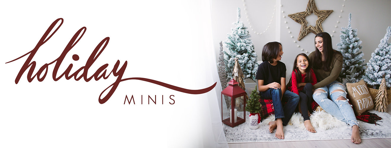 Website banner Christmas Minis photo sessions