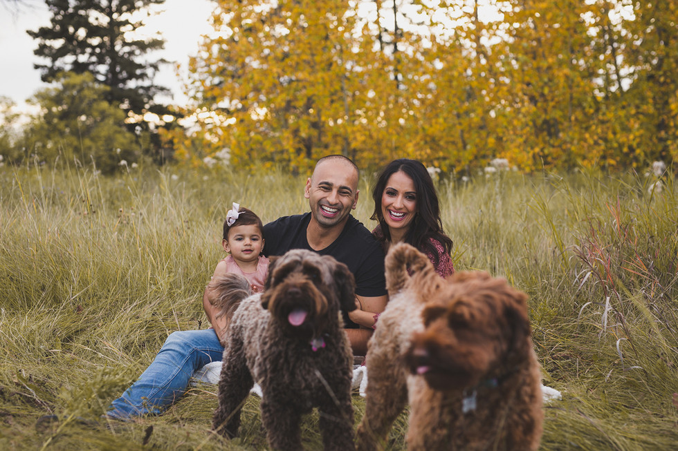Edmonton-photographer-fall-puppy-family-