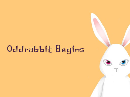 Oddrabbit Begins