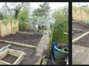 A busy weekend of garden developments