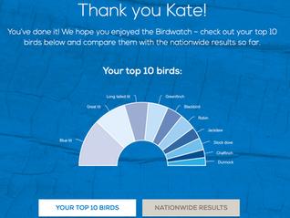 My RSPB Big Garden Birdwatch 2020