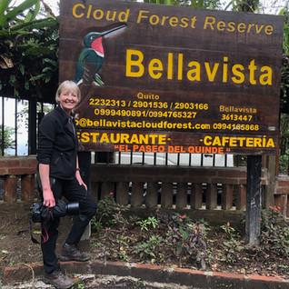 WildlifeKate in Ecuador: Day 4 –  Bellavista Cloud Forest Reserve