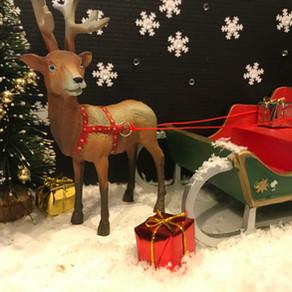 I Unveil the Christmas Mammal Box 2018!