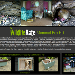 BBC Autumnwatch hits our Screens… and my Mammal Box HD!