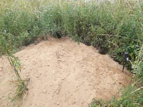 Bushnells set up at Badger Hollow