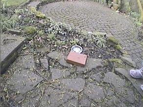 Garden Camera set up!
