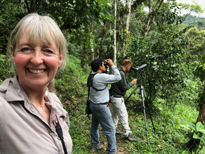 WildlifeKate in Ecuador: Day 2 – We head to Maquipucuna Reserve