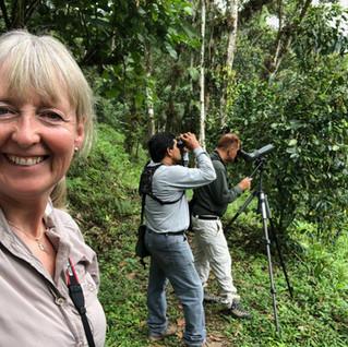 WildlifeKate in Ecuador: Day 2 – We head to Maquipucuna Reserve