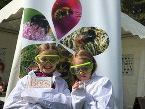 The Bumble Bee Trust at BBC Countryfile Live!
