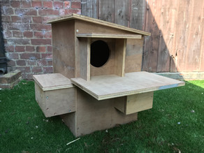 A Posh New Tawny Box for Yew View… plus latest video clips…