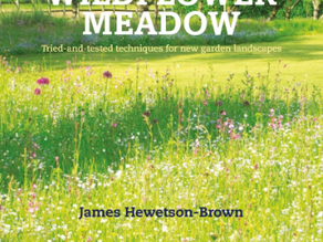 'How to make a Wild Flower Meadow' – my contribution to a new book
